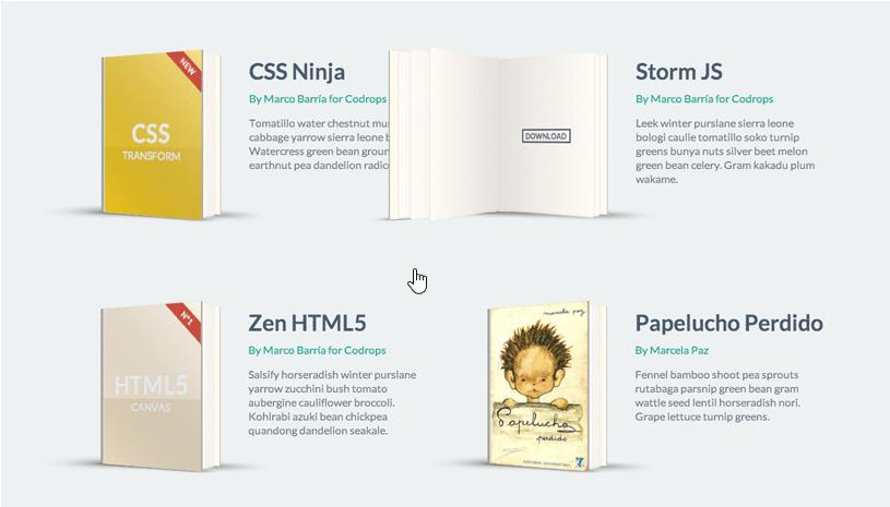 CSS Book Flip